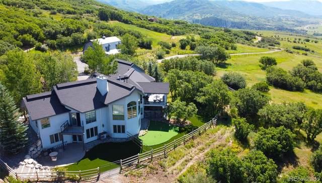 44300 Diamondback Way, Steamboat Springs, CO 80487 (#7393255) :: Peak Properties Group