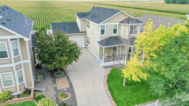 1216 Fairfield Avenue, Windsor, CO 80550 (MLS #7394265) :: Bliss Realty Group