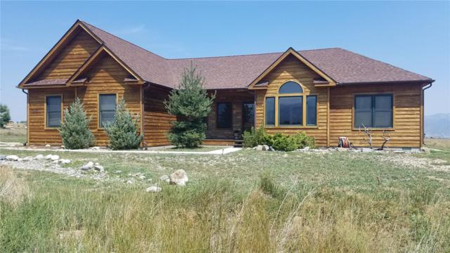 8150 Windmill Lane, Salida, CO 81201 (#7397552) :: Bring Home Denver