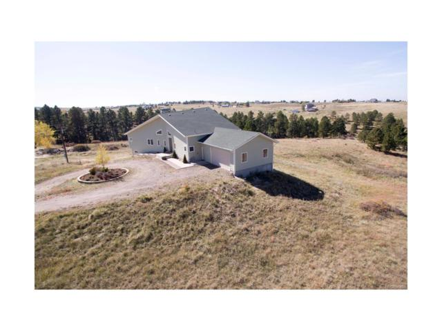 11445 E Oxen Road, Parker, CO 80138 (MLS #7397684) :: 8z Real Estate