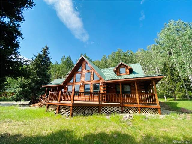 53 N Bear Paw Court, Antonito, CO 81120 (#7401545) :: The DeGrood Team