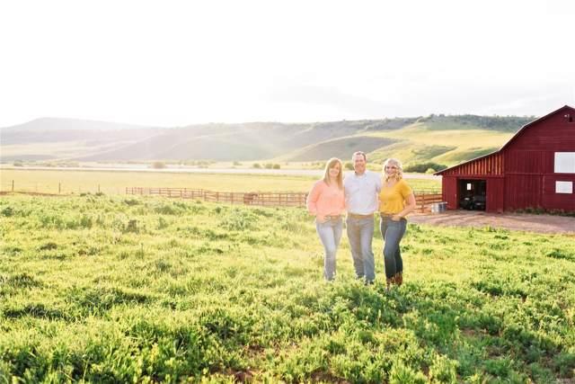 30200 Highway 131, Steamboat Springs, CO 80487 (#7402525) :: The HomeSmiths Team - Keller Williams
