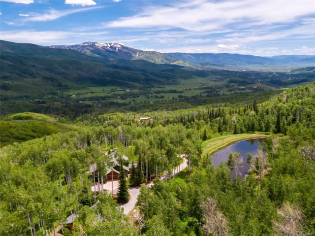 42185 Fern Hill Road, Steamboat Springs, CO 80487 (#7408877) :: The Heyl Group at Keller Williams