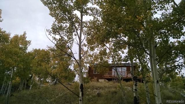 1391 Ute Trail, Como, CO 80432 (#7409522) :: The Griffith Home Team