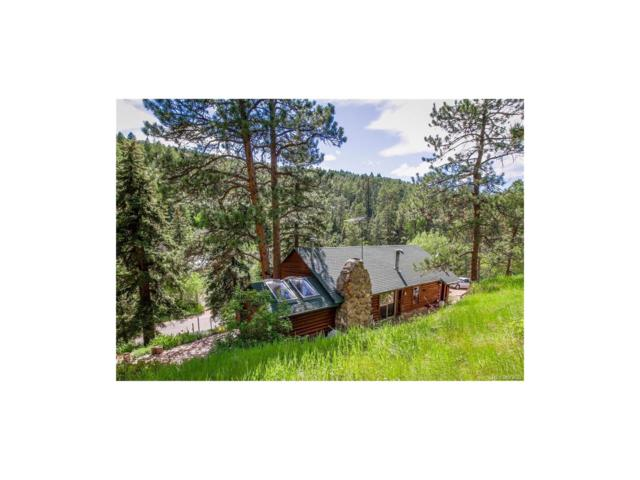 7488 S Turkey Creek Road, Morrison, CO 80465 (#7409773) :: The Peak Properties Group
