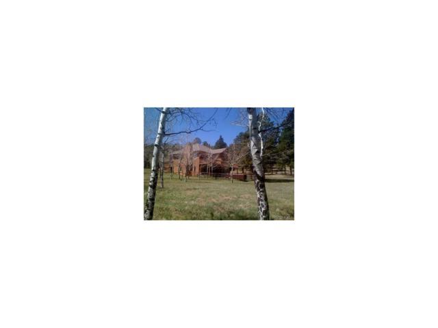 37 Lazy Lane, Pine, CO 80470 (MLS #7412175) :: 8z Real Estate
