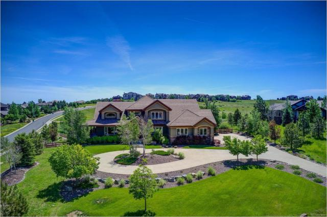 5124 Starry Sky Way, Parker, CO 80134 (#7412663) :: The HomeSmiths Team - Keller Williams