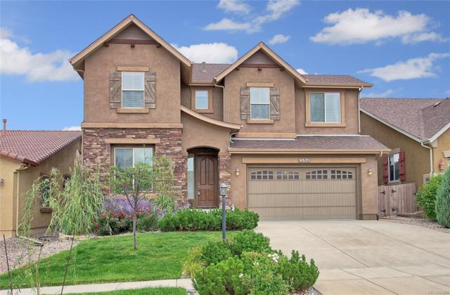 9571 Lizard Rock Trail, Colorado Springs, CO 80924 (#7413126) :: Ben Kinney Real Estate Team