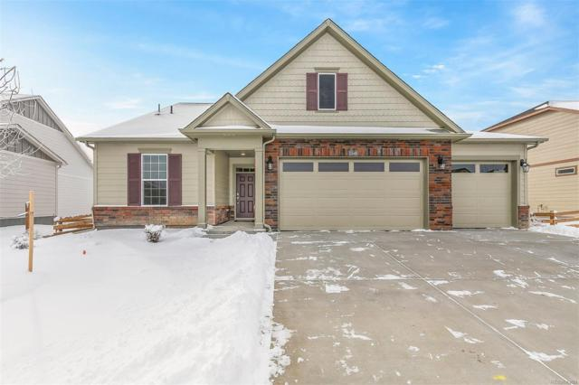 15614 Spruce Street, Thornton, CO 80602 (MLS #7413628) :: 8z Real Estate
