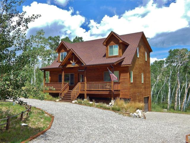 3080 High Creek Road, Fairplay, CO 80440 (MLS #7417257) :: Kittle Real Estate