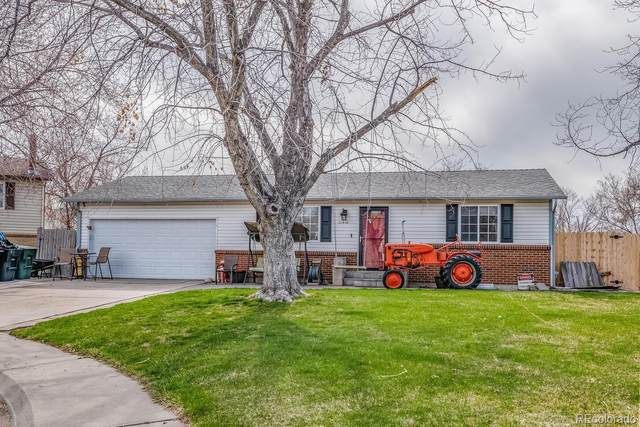 11410 Madison Street, Thornton, CO 80233 (MLS #7419151) :: Bliss Realty Group