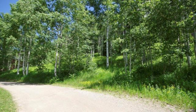 31640 Vistas Court, Steamboat Springs, CO 80487 (#7420655) :: The City and Mountains Group