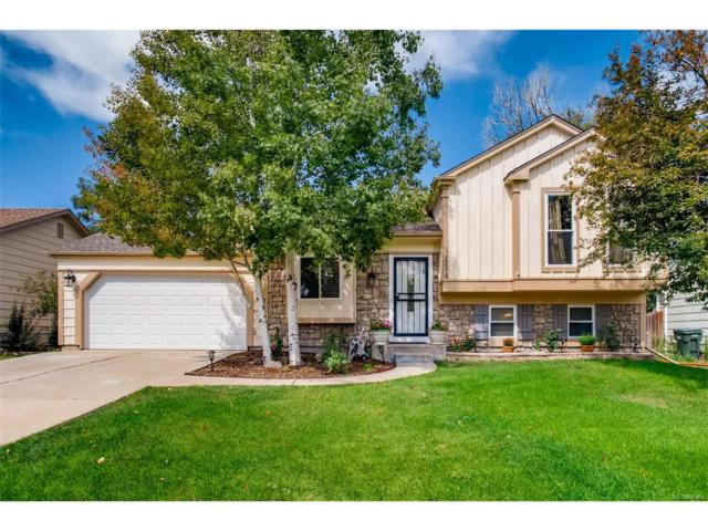 20978 E Dorado Circle, Centennial, CO 80015 (#7420682) :: ParkSide Realty & Management