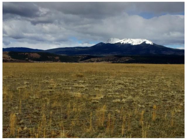 250 Salt Ranch Trail, Hartsel, CO 80449 (MLS #7424759) :: 8z Real Estate