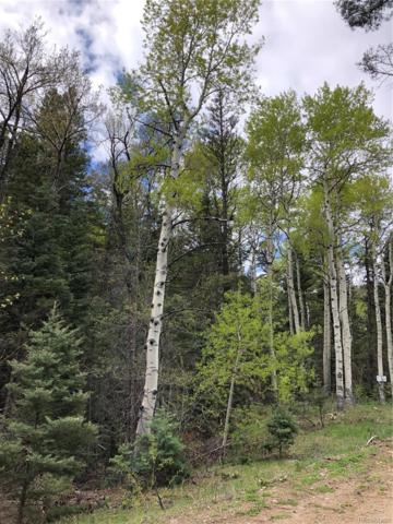 0 County Road 4, Howard, CO 81242 (MLS #7426905) :: Bliss Realty Group