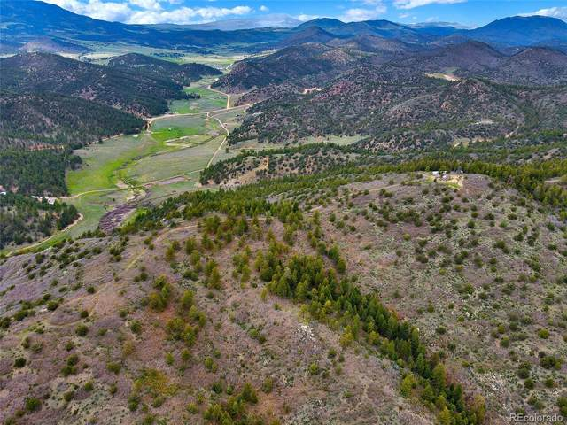 0000 Ranch Road, Canon City, CO 81212 (#7427461) :: The DeGrood Team