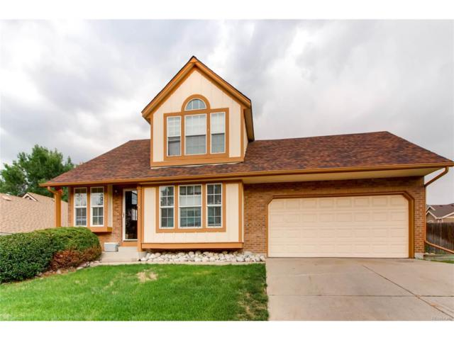 6420 Coors Street, Arvada, CO 80004 (MLS #7428570) :: 8z Real Estate