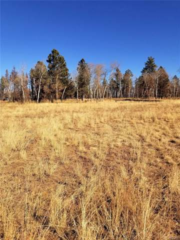 13621 Forbes Park Road, Fort Garland, CO 81133 (#7428843) :: The Peak Properties Group