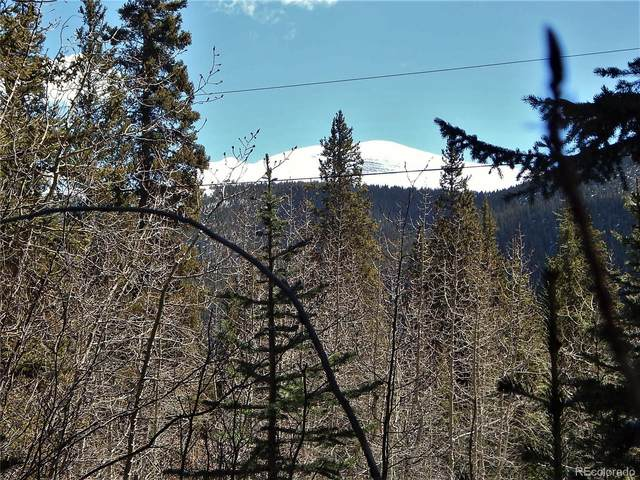 589 Mine Dump Road, Alma, CO 80420 (#7433731) :: Mile High Luxury Real Estate