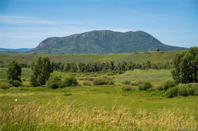 Tbd  Cc Way, Steamboat Springs, CO 80487 (#7434569) :: Wisdom Real Estate