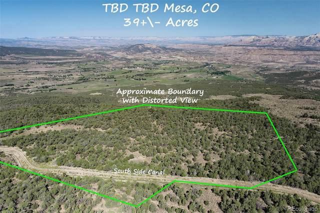 Tbd, Mesa, CO 81643 (#7438152) :: iHomes Colorado