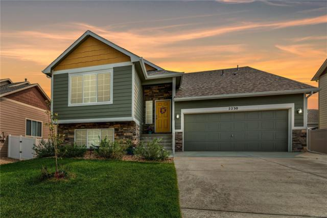 2230 74th Avenue, Greeley, CO 80634 (#7442524) :: The Griffith Home Team