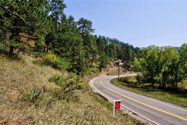 0 S Parmalee Gulch Road, Indian Hills, CO 80454 (#7443076) :: The HomeSmiths Team - Keller Williams