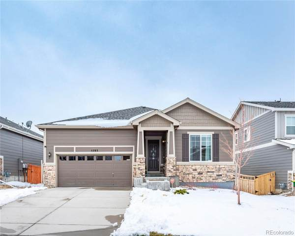 5783 Haywagon Lane, Castle Rock, CO 80108 (MLS #7443265) :: Find Colorado
