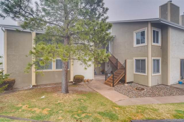1030 Magic Lamp Way 5E, Monument, CO 80132 (#7446193) :: The Dixon Group