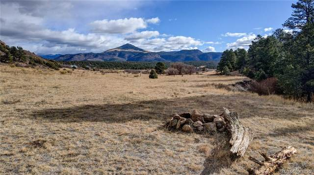 1571 Sioux Road, Florissant, CO 80816 (MLS #7448080) :: 8z Real Estate
