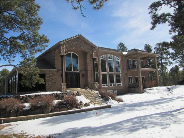 16204 Pole Pine Point, Colorado Springs, CO 80908 (#7450502) :: The Heyl Group at Keller Williams