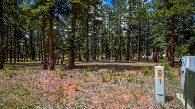 610 Chipmunk Drive, Woodland Park, CO 80863 (#7450791) :: Mile High Luxury Real Estate