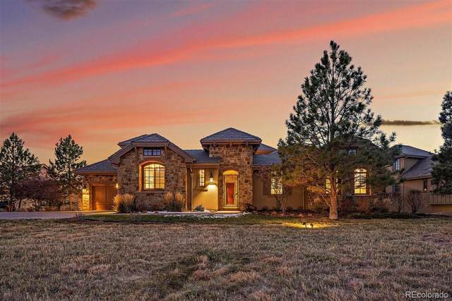 8751 Eagle Moon Way, Parker, CO 80134 (MLS #7458547) :: The Sam Biller Home Team