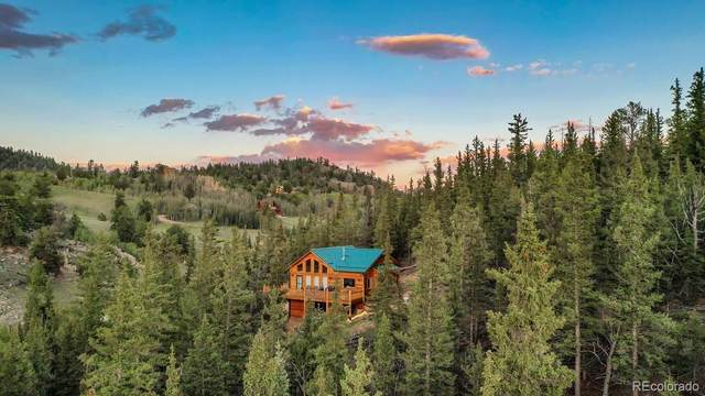 240 Palomino Road, Como, CO 80432 (#7458611) :: The Healey Group
