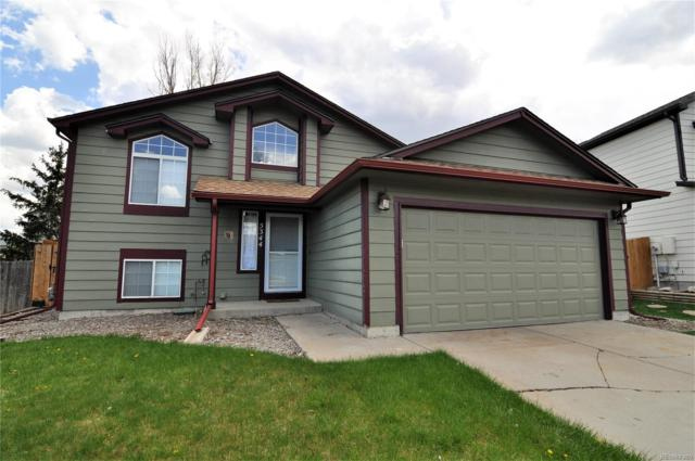 5344 Willow Court, Castle Rock, CO 80104 (#7461321) :: The Heyl Group at Keller Williams