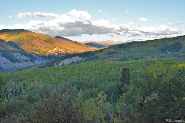 12001 Gypsum Creek Road, Gypsum, CO 81637 (MLS #7462304) :: Kittle Real Estate