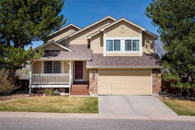 1397 Ascot Avenue, Highlands Ranch, CO 80126 (#7466908) :: The Peak Properties Group