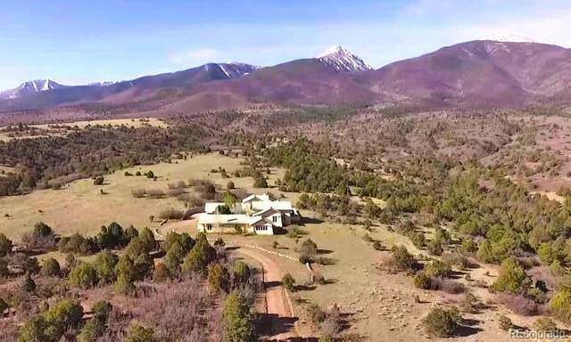 155 Julie Lane, Cotopaxi, CO 81223 (#7470286) :: Mile High Luxury Real Estate