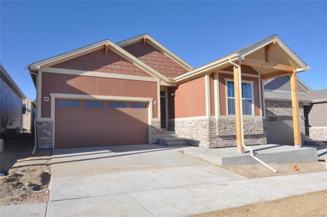 11630 Colony Loop, Parker, CO 80138 (#7471796) :: Wisdom Real Estate