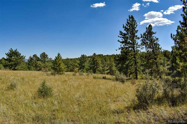 674 Pikes Trail, Guffey, CO 80820 (#7473989) :: THE SIMPLE LIFE, Brokered by eXp Realty