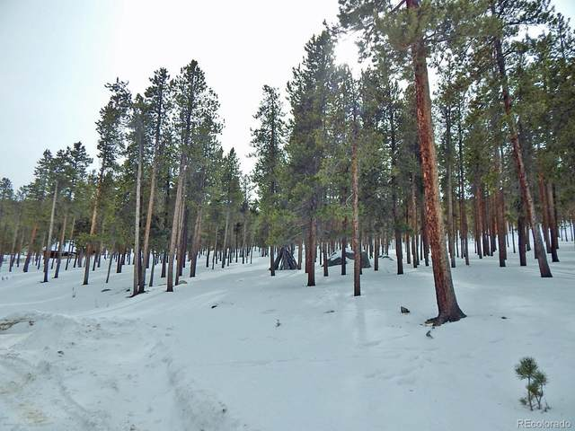 National Forest Drive, Buena Vista, CO 81211 (#7475045) :: The DeGrood Team