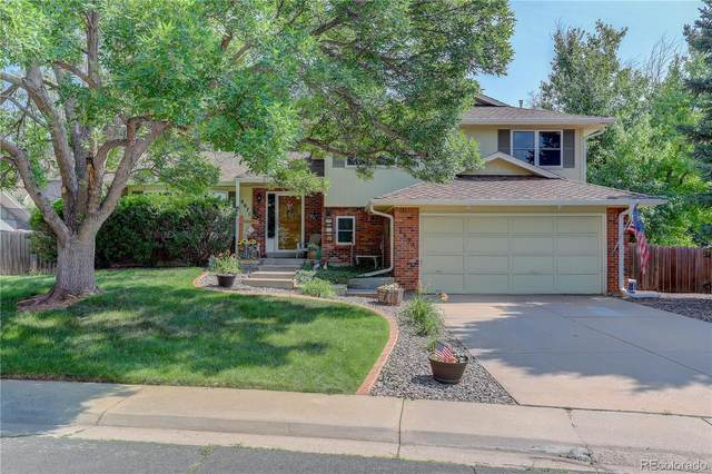 8071 S Cook Way, Centennial, CO 80122 (#7476535) :: You 1st Realty