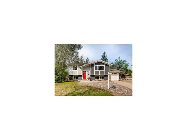 743 W Sterne Parkway, Littleton, CO 80120 (MLS #7481301) :: 8z Real Estate