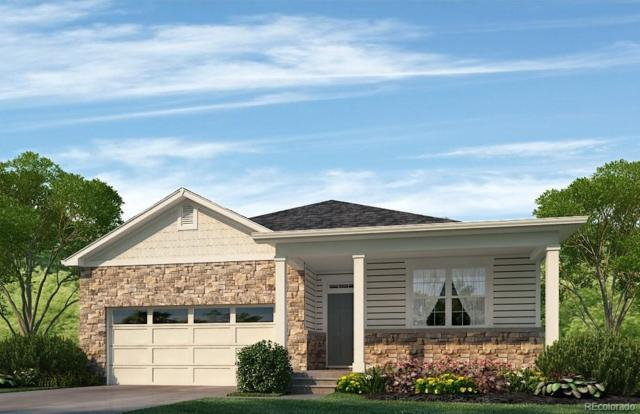 19448 E 65th Place, Aurora, CO 80019 (#7482344) :: The Peak Properties Group