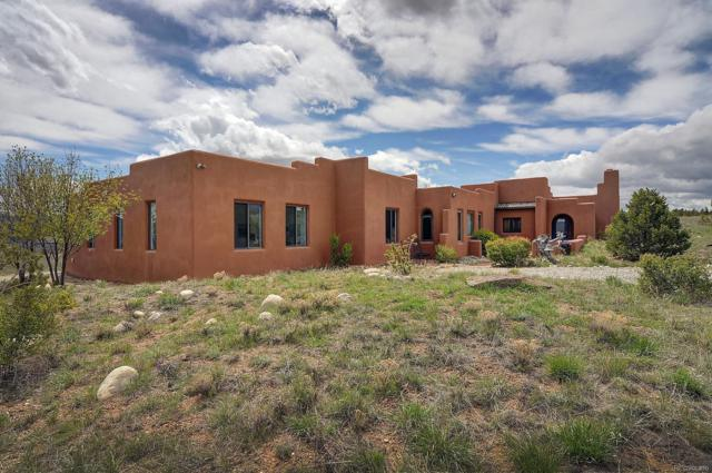 13101 County Road 261 P, Nathrop, CO 81236 (#7488318) :: The Heyl Group at Keller Williams