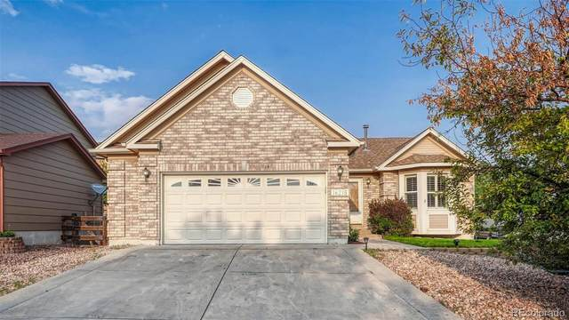 16215 Palace Creek Drive, Monument, CO 80132 (#7488455) :: The DeGrood Team