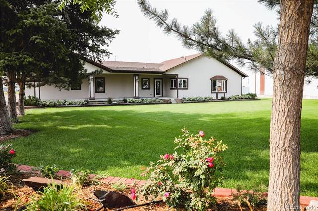 16152 Henry Avenue, Atwood, CO 80722 (#7489966) :: The DeGrood Team