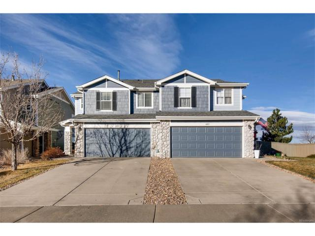 6043 Wescroft Avenue, Castle Rock, CO 80104 (#7490988) :: The HomeSmiths Team - Keller Williams