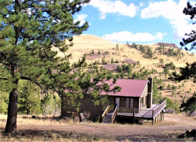 257 Antelope Trail, Cotopaxi, CO 81223 (#7491436) :: Compass Colorado Realty