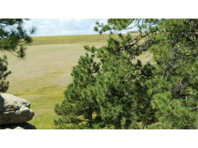 21623 Comanche Creek Drive, Elbert, CO 80106 (MLS #7494165) :: 8z Real Estate